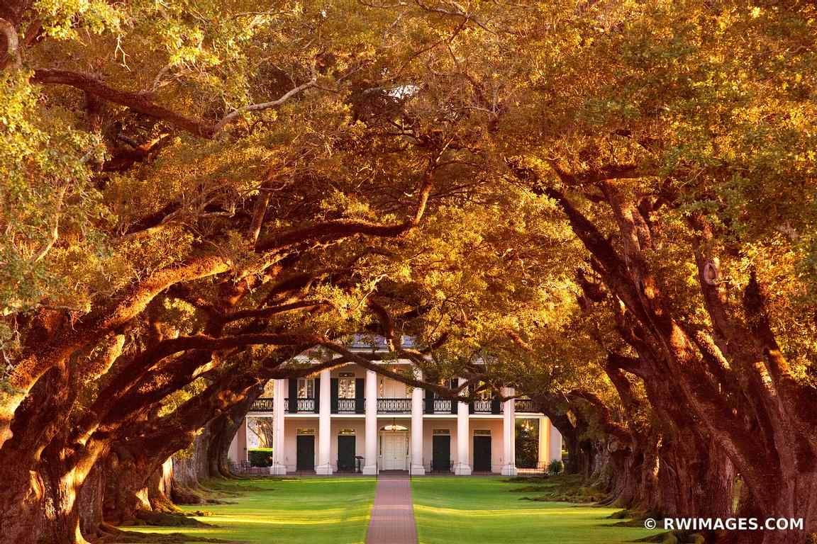 OAK ALLEY PLANTATION VACHERIE LOUISIANA COLOR SUNSET