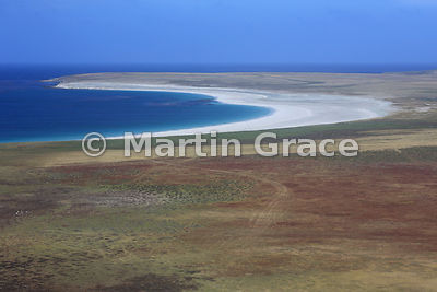 Sandy Bay, Bleaker Island from the air - a typical Falkland Islands landscape with dwarf shrub heath in the foreground and a stunning white sandy beach