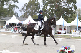 SI_Festival_of_Dressage_310115_Level_6_7_MFS_0652