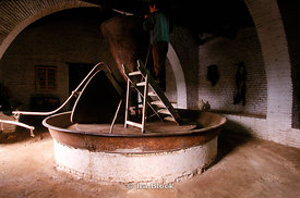 Spanish worker with old olive oil press