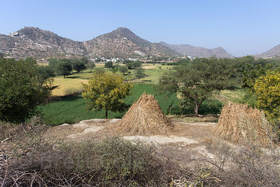 The gorgeous mosaic of rocks and farms surrounding Rajgarh village, Rajasthan, India