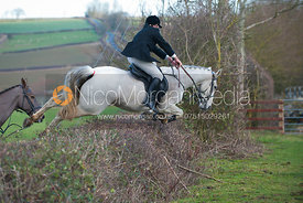 Members of the field jumping a hedge in Brooke