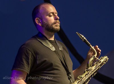Jon Natchez, brass, The War on Drugs, TBD Fest, 2014