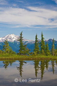 Glacier Peak viewed from a tarn in Mt. Forgotten Meadows, Mt. Baker-Snoqualmie National Forest, Cascade Mountains, Washington, USA, August, 2008_WA_4591