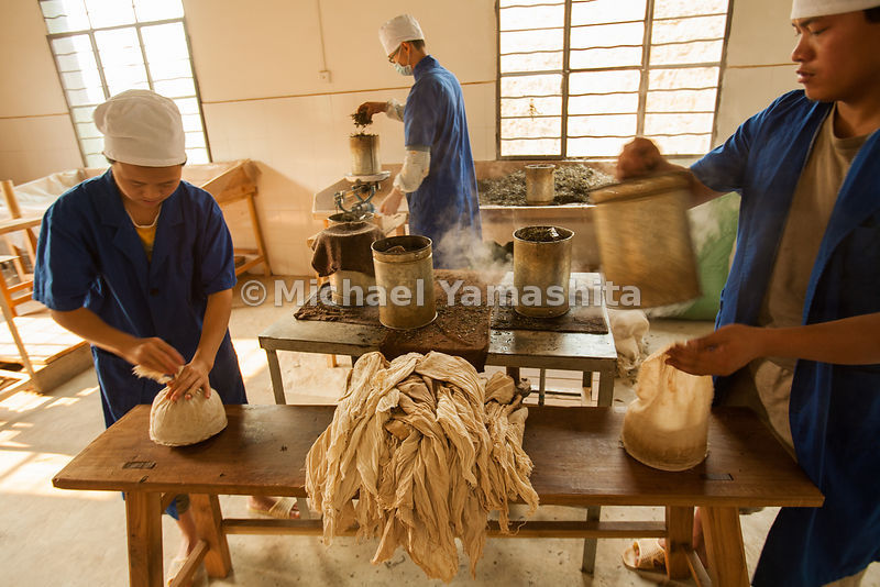 Puer tea is steamed and pressed into flat cakes as it has been for hundreds of years. Here at Yiwu's Bao Pu Shan tea factory, seven generations have produced the highest quality tea.