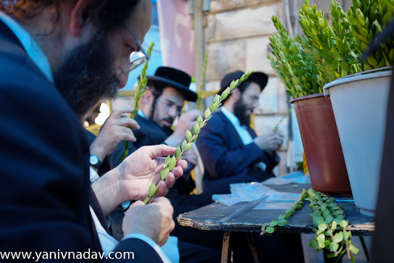 Preparing for Sukkot in the Mea Shearim Neighborhood