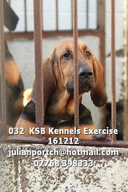 032__KSB_Kennels_Exercise_161212