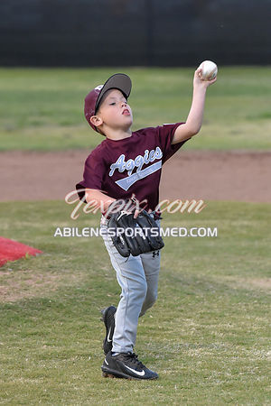 04-09-2018_Southern_Farm_Aggies_v_Wildcats_(RB)-2018