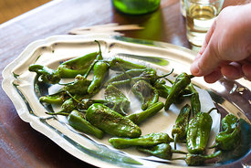 padron peppers as a typical Spanish tapas style snack on wood table , with sherry glasses and bottle in background and hand holding pepper to right side