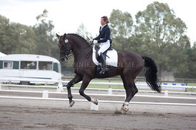 SI_Dressage_Champs_260114_020