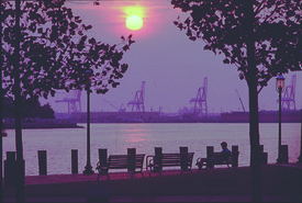 town_point_park_waterfront_sunset_man_sitting_on_bench