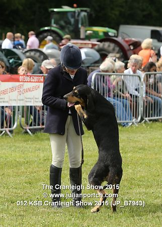 KSB at the Cranleigh Show 2015