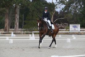SI_Festival_of_Dressage_300115_Level_9_SICF_0467