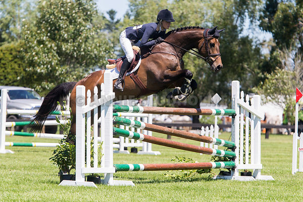 East Coast Performance Horses/Hokonui Sport Horses 5YO photos