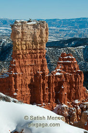 Bryce Canyon National Park, Utah, USA (Published in Nature Photographer Magazine, Fall/Winter 2010)