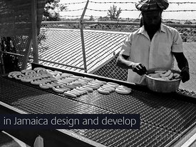 design and development of a commercial solar banana dryer in Jamaica