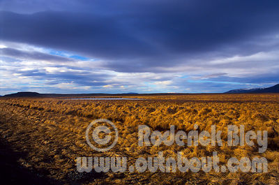 Landscapes & Rural Scenes photos