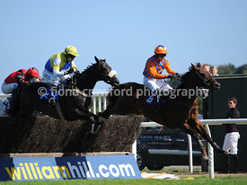 2.45pm 31st August 2013 Novices Handicap Steeple Chase with winner Jayandbee