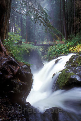 A rustic footbridge over elegant and powerful Sol Duc Falls, Olympic Rainforest, Washington.