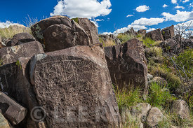 Rock Art with Geometric Design at Three Rivers Petroglyph Site