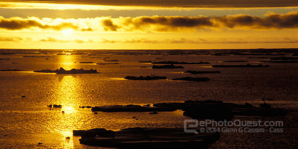 Ice-Floes in Sunset