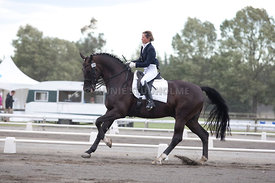 SI_Dressage_Champs_260114_021