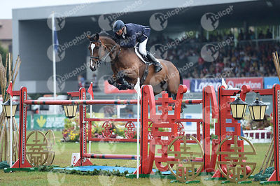 Keith Shore, (Gbr) and MYSTIC HURRICANE