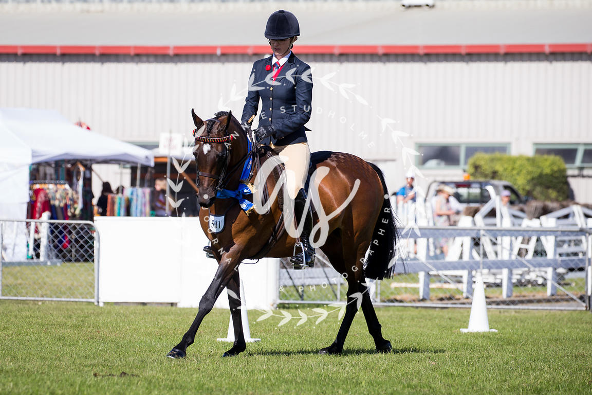 NZ_Ag_Show_2018_fri_-5151