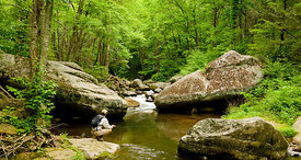 001-Eastern_Landscapes_D105106_BLUE_RIDGE_FLY_FISHING-36_Preview