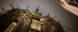 cathedral's gargoyles at night, Clermont Ferrand