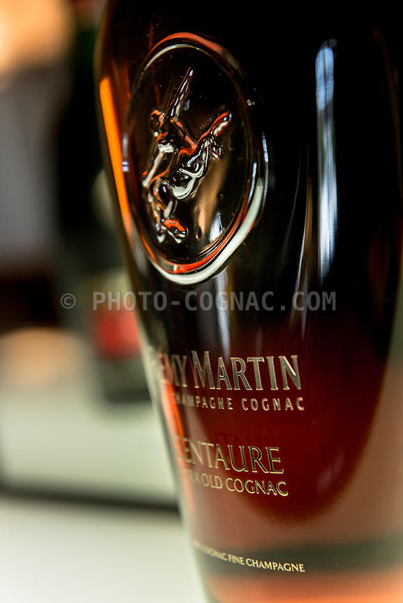 Rémy Martin photos