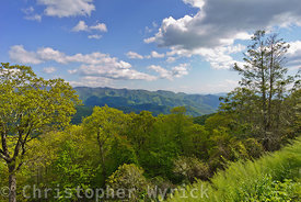 Nice image of the Blue Ridge Mountains of North Carolina shot from the parkway about 30 minutes east of Cherokee.
