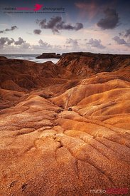 Savane de la Petrification in Martinique Caribbean