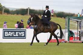 Canty_A_P_131114_Side_Saddle_1212