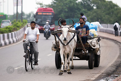 The diversity of transportation in India. A bicyclist, ox cart, motorcycle, and bus share the road near the Delhi Railway Station, Delhi, India.