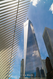 The World Trade Center and The Oculus in Lower Manhattan, New York City.