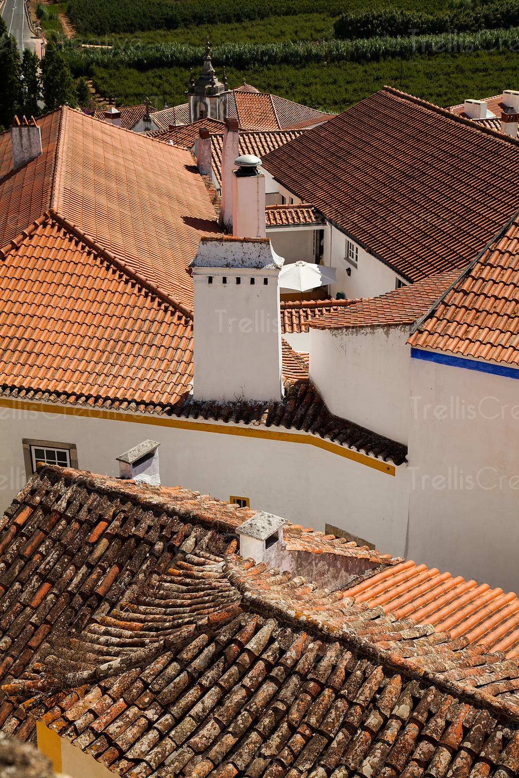 Spanish tile rooftops in Obidos, Portugal