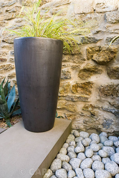 Contemporary courtyard garden designed by Amir Schlezinger. Black container planted with Hakonechloa macra 'Aureola' with Agave americana in narrow bed along wall below. Private garden, Dorset, UK