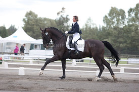 SI_Dressage_Champs_260114_022