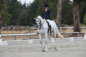SI_Festival_of_Dressage_310115_Level_5_Champ_0826