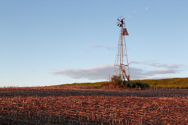 Iowa Windmill