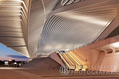 Liège Guillemins Train Station at Night