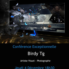 Birdy Tg Exhibition in LUXEMBOURG at Celina Gallery photos