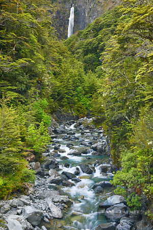 Waterfall in temperate rainforest - Oceania, New Zealand, South Island, Canterbury, Selwyn, Arthur's Pass Nationalpark, Devil's Punchbowl Falls (Polynesia, Southern Alps) - digital