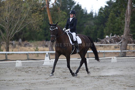 SI_Festival_of_Dressage_300115_Level_3_NCF_0097