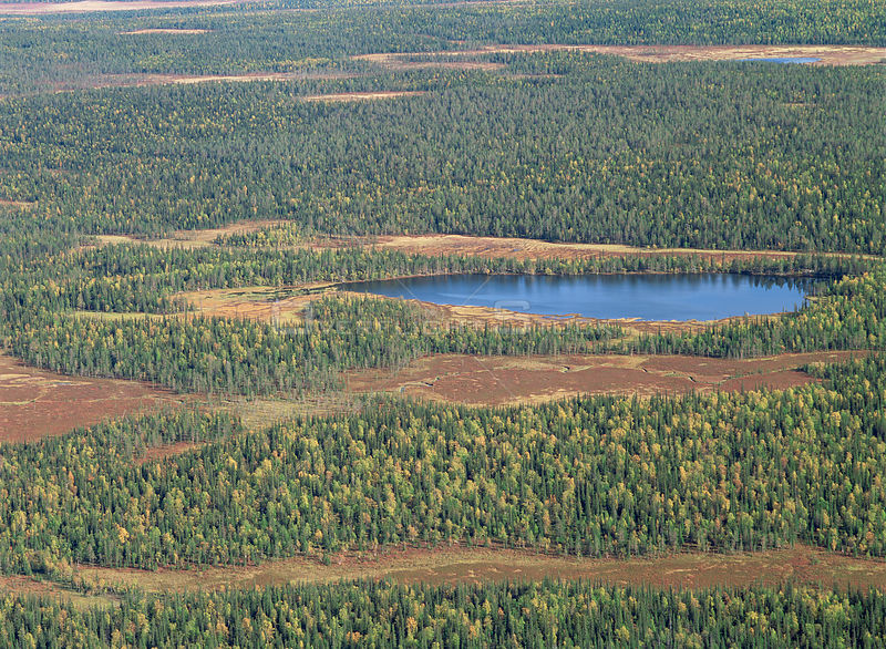 Aerial view of Lake Ylisenpaanjarvi surrounded by taiga forest in Autumn, Pallas-Ounastunturi NP, Lapland, Finland
