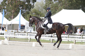 SI_Festival_of_Dressage_310115_Level_6_7_MFS_0621