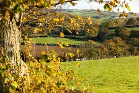 English countryside in autumn, 20161102183