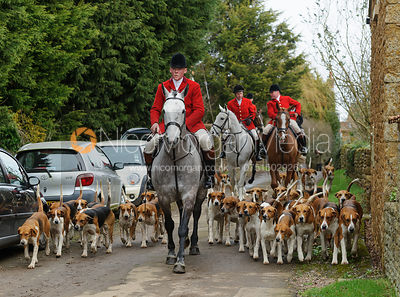The Belvoir Hunt at Springfield Farm 20/2 photos