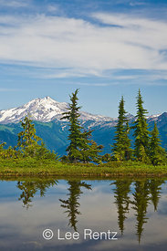 Glacier Peak viewed from a tarn in Mt. Forgotten Meadows, Mt. Baker-Snoqualmie National Forest, Cascade Mountains, Washington, USA, August, 2008_WA_4592